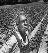 Washington Report: Black Farmers Settlement Bill Clears the House