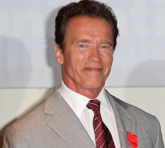 Arnold Schwarzenegger & 5 Men Whose Finances Were Impacted by a Sex Scandal