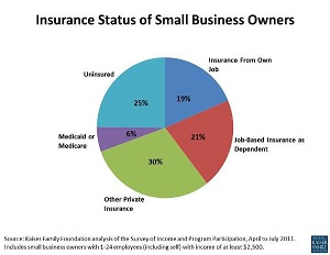 Small Businesses Face Tough Healthcare Challenge in 2013
