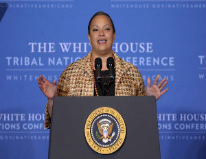 Lisa Jackson, Head of the Environmental Protection Agency, to Resign