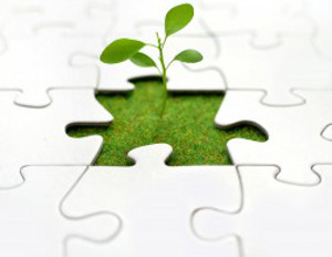 Growing Your Business At the Right Pace