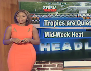 Cool Jobs: Meteorologist Somara Theodore Talks STEM & Storm Watching