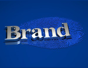 Shine By Building an Irresistible Brand Online