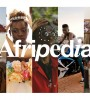 Afripedia logo-site hero