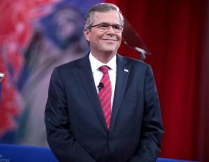 Jeb Bush, Wikipedia