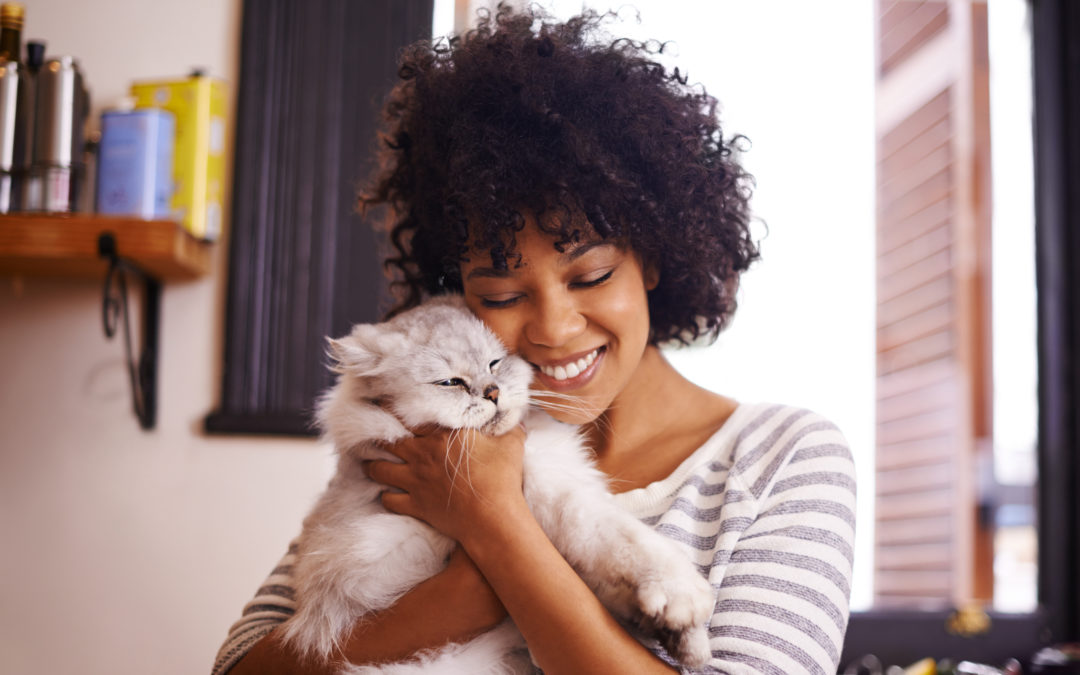 4 Great Franchise Opportunities for Pet Lovers