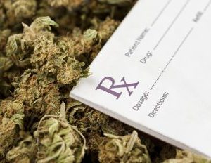 Cannabis Legalization Should Benefit People, Not Bottom Lines