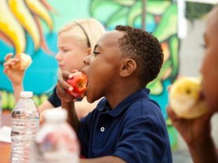 Want Higher Test Scores? Eat Healthier Lunches