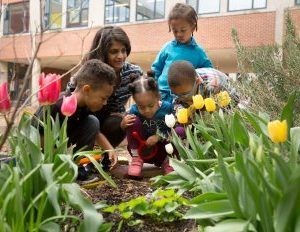 Improving Education Options for Children of Color