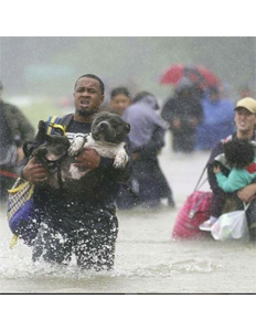 Vetted Organizations and Charities You Can Donate To Help the Victims of Hurricane Harvey