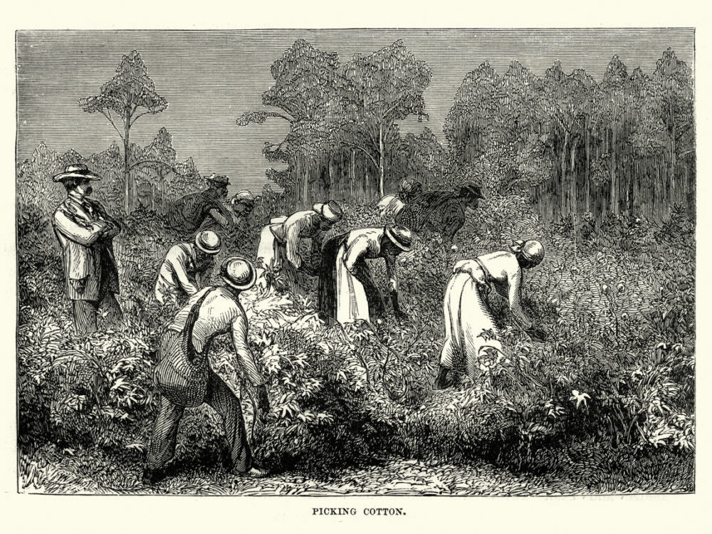 ancestry,com uses term migrants for slaves