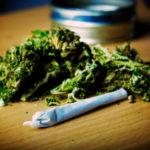 marijuana convictions
