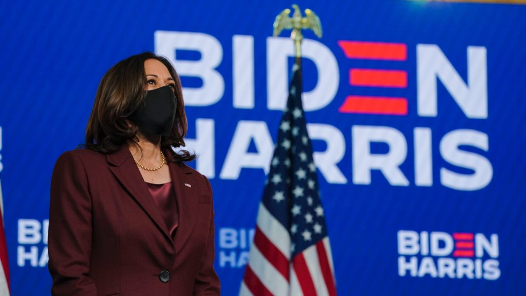 Secret Service Was Worried A Black Woman Wanted To Kill VP Kamala Harris Because Of Her Purse