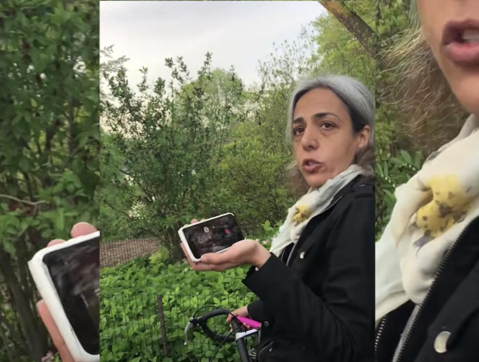 Spicy Karen, Alana Lambert,Central Park, phone charger, police